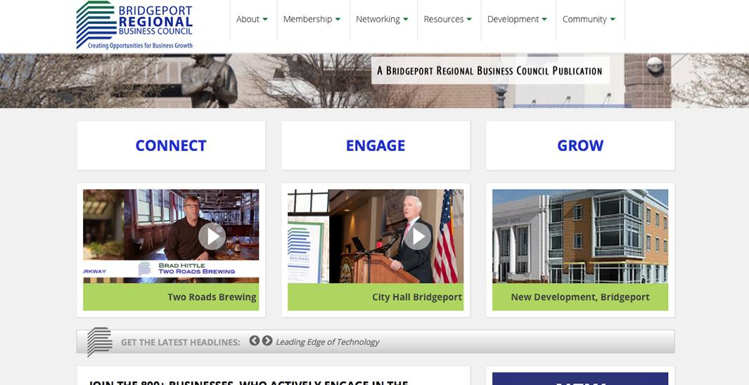 portfolio-detail_brbc_homepage02