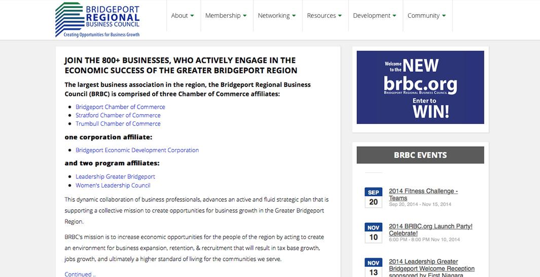 portfolio-detail_brbc_homepage03